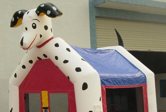 Le chien dalmatien